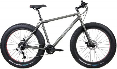 best fat tire bikes