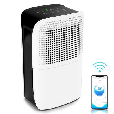 quality dehumidifier for basement